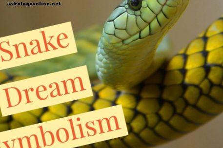 Die Bedeutung und Symbolik von Schlangenträumen