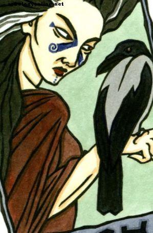 Morrigani võlu: vägev macha