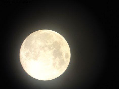 満月を祝う13の安くて簡単な方法