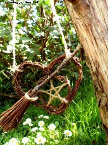 Как да създадете градина на вещици